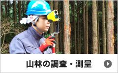 山林の調査・測量